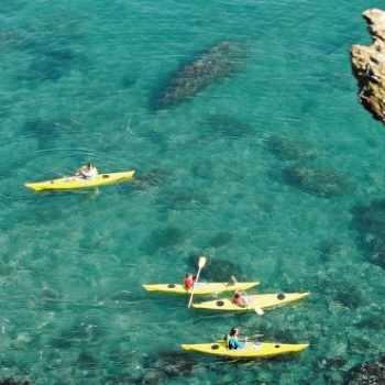 Activites Argeles Sur Mer